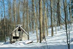 Övergiven New England Sugarhouse Arkivfoto