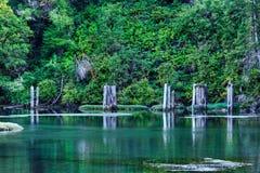 Övergiven pirAlbion flod Fotografering för Bildbyråer