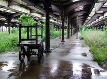 övergiven railyway station Fotografering för Bildbyråer