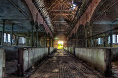 Övergiven stallning för nötkreatur i det tyska slakthuset Rosenau Royaltyfria Foton