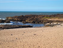 Övergiven stenig strand i OUALIDIA, MAROCKO Royaltyfria Bilder