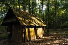 Övergiven stuga i forestThailanden Royaltyfria Foton