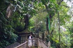 Övergiven tempel i grön djungel Demolerade gamla stenar byggnad i bevuxen regnskog som det spöklika landskapet med fördärvar arkivfoto