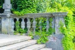 övergiven trappuppgång Arkivfoto