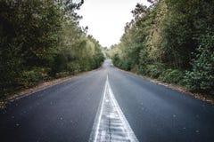Övergiven väg Royaltyfri Fotografi