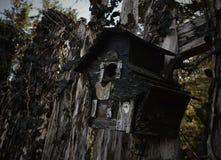 övergivet fågelhus Royaltyfria Foton