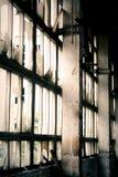 övergivet fabriksfönster Arkivbild
