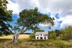 Övergivet hus och gammalt träd Arkivbild