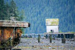 Övergivet i vildmarken Royaltyfri Fotografi