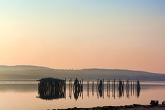 Övergivna pilings på Sandy Beach Maine Arkivbild