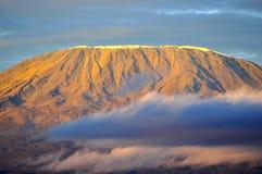 Överkant av kilimanjaroberg i soluppgången Arkivbild