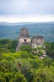 Överkant av mayan tempel på den Tikal nationalparken - Guatemala Arkivfoton