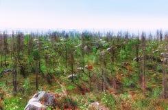 Överkant av monteringen Vottovaara Royaltyfria Foton