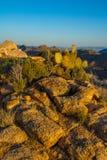 Överkant för berg för Mojaveöken arkivfoton