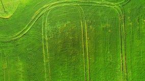 Överkant för flyg- sikt Flyga över ett fält av grönt vete på en ljus solig dag Flyga över vägen var övergående bilar arkivfilmer