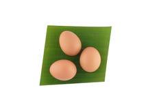 Överkant-sikt: Ägg på bananbladet, på vit bakgrund Royaltyfri Foto