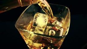 Överkanten av sikten av hällande whisky för bartendern i det dricka exponeringsglaset med iskuber på svart bakgrund, tid av koppl lager videofilmer