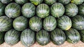 Överlappning av många vattenmelon Royaltyfri Foto