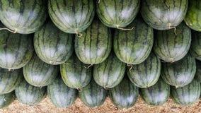 Överlappning av vattenmelon i marknaden Royaltyfri Foto