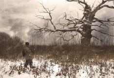 ÖVERRASKA, ett vilket träd - fotograf och ett träd Arkivfoton