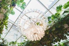 Översidanärbildfotoet av den enorma moderna ljuskronan som göras av tomglasen som omges av gröna växter royaltyfria bilder