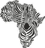 Översikt av Afrika med den head sebran
