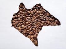 översikt av Chiapas med grillade kaffebönor och vit bakgrund fotografering för bildbyråer