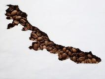 översikt av Veracruz med grillade kaffebönor och vit bakgrund royaltyfria foton