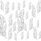 Översiktsfjäderdräkt royaltyfri illustrationer