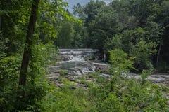 Översittare Brett Park Waterfall royaltyfri foto