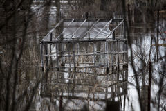 Översvämma översvämmad trädgård Arkivfoto
