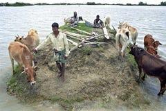 Översvämma i deltan Bangladesh, klimatförändring Royaltyfri Fotografi