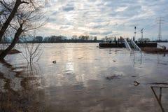 Översvämma i vinter på Rhen med en bro och en vrakgods Royaltyfria Foton