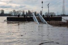 Översvämma i vinter på Rhen med en bro och en vrakgods Royaltyfri Bild