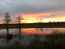 översvämma solnedgångar i träsket med krusningar i vattnet royaltyfri fotografi