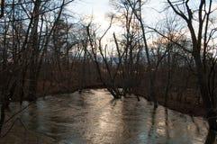 Översvämmad flod i träna Royaltyfri Fotografi