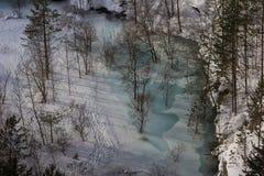 Översvämmad gammal lins för villebråd i vinter Arkivbild