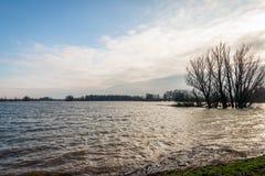 Översvämmad holländsk polder Royaltyfri Fotografi