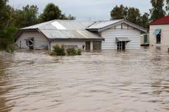 översvämmad husförsäkring Arkivbild