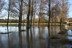 Översvämmad land och park. royaltyfria foton