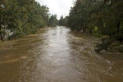 Översvämmad Nepean flod Royaltyfria Foton