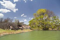 Översvämmad semesterort på sjön Baringo i Kenya Arkivbilder