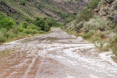 Översvämmad väg in i den Rio Grande klyftan Arkivbilder