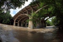 Översvämmade Barton Creek, minnes- flod i Austin Texas Arkivfoto