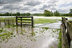 översvämmade fält Fotografering för Bildbyråer