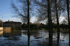 Översvämmade park och fält. arkivbild