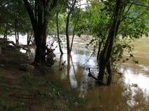 Översvämmade Potomac River i Washington DC royaltyfria bilder