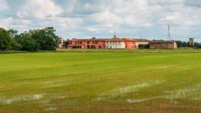 Översvämmade risfältfält i lantliga Lombardy, Italien Royaltyfri Foto