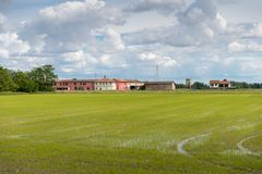 Översvämmade risfältfält i lantliga Lombardy, Italien Fotografering för Bildbyråer