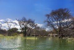 Översvämmat hus, Kenya Arkivfoton
